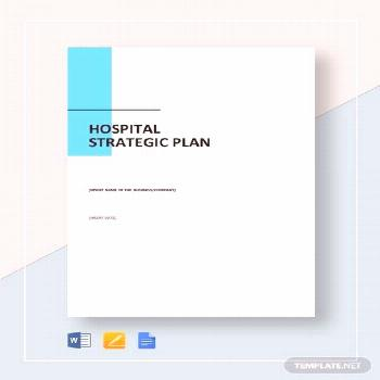 Instantly Download Hospital Strategic Plan Template, Sample & Example in Microsoft Word (DOC), Goog